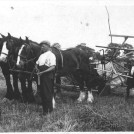Photo:1928 -32 Horse team with sail reaper at Manor Farm Orwell